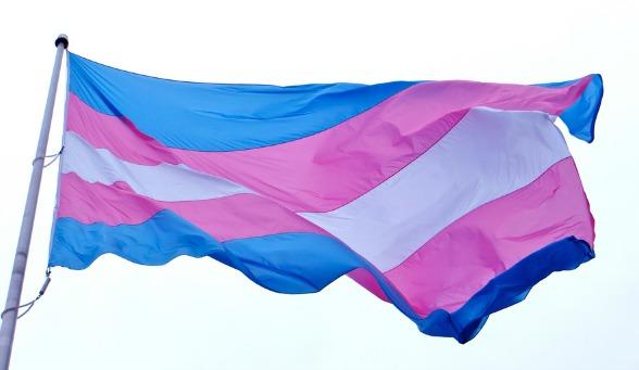 Transgender Equality Flag