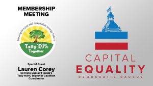 Tally 100% Together Coalition
